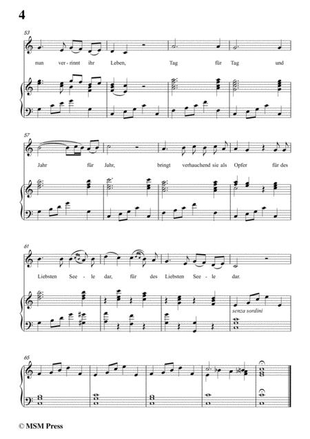 schubert don gayseros iii in c major d 93 no 3 for voice and piano sheet  music pdf download - sheetmusicdbs.com  download sheet music and notes in pdf format